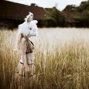 Follow the white Rabbit......
